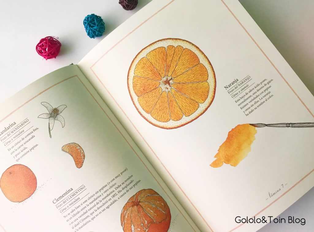 Serie Inventario ilustrado de... Kalandraka
